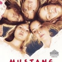mustang-895061507-large